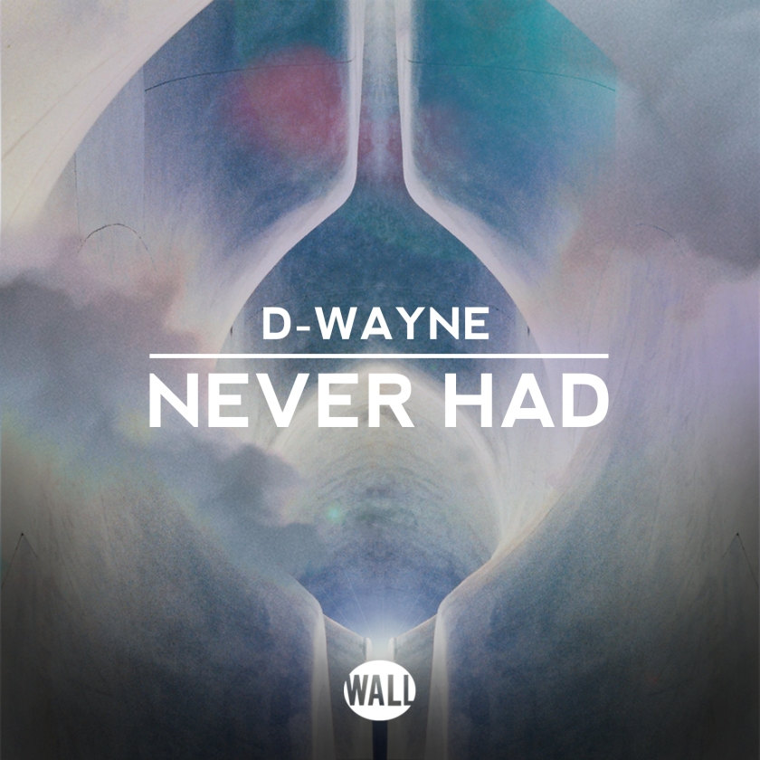 D-wayne - Never Had (Offical Artwork)